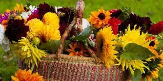 Rudens ziedi piegāde Rīgā✿➤ Nopirkt rudens ziedus ar piegādi Latvijā ➄